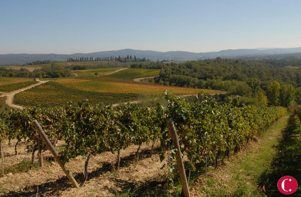 Chianti, an invention of Tuscan nature and culture
